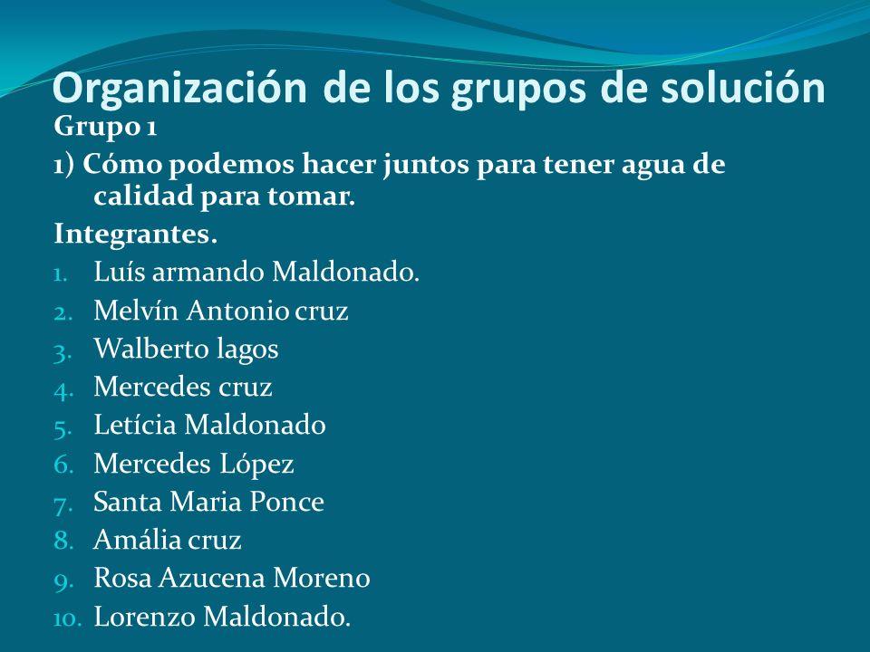 Organización de los grupos de solución