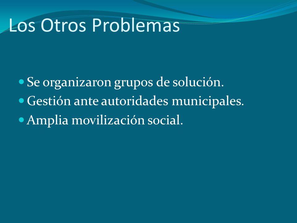 Los Otros Problemas Se organizaron grupos de solución.