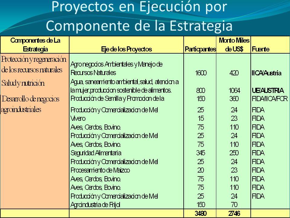 Proyectos en Ejecución por Componente de la Estrategia
