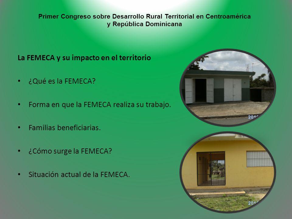 La FEMECA y su impacto en el territorio ¿Qué es la FEMECA