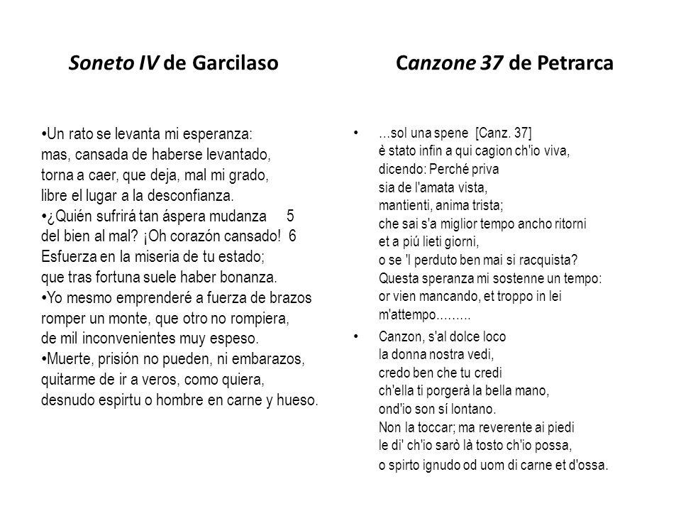 Soneto IV de Garcilaso Canzone 37 de Petrarca