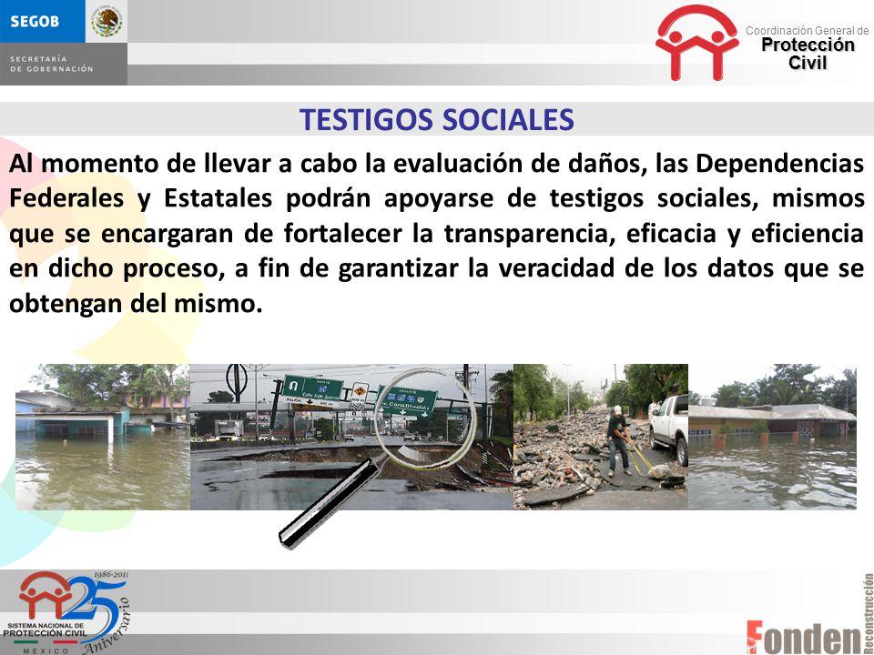 TESTIGOS SOCIALES