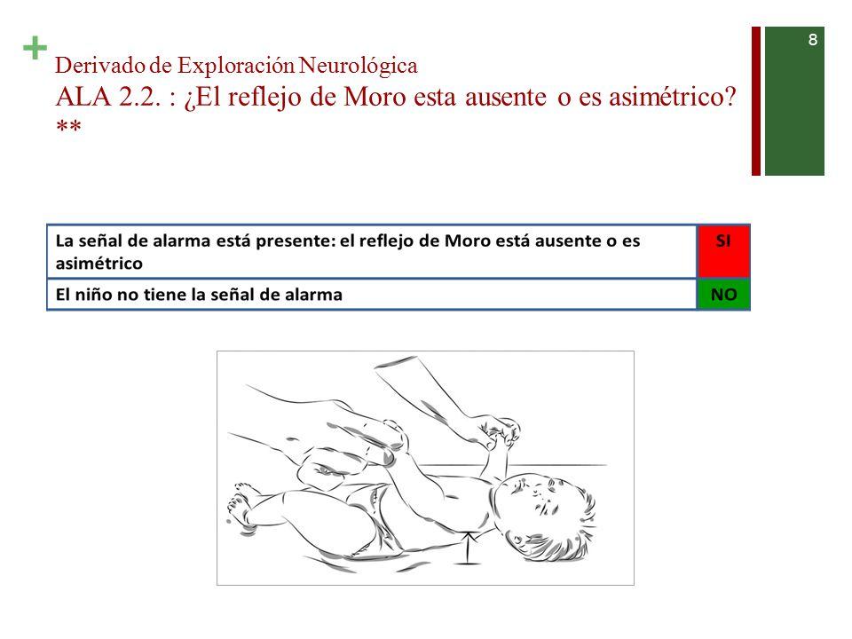 Derivado de Exploración Neurológica ALA 2. 2