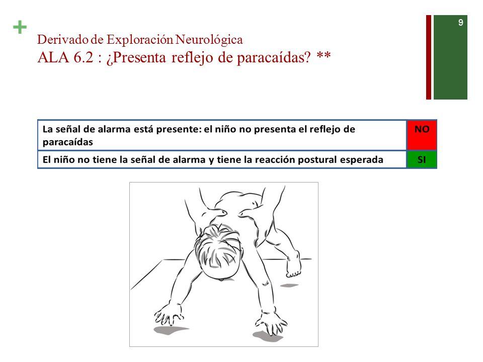 Derivado de Exploración Neurológica ALA 6