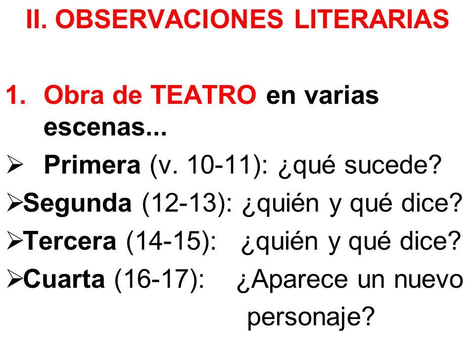 II. OBSERVACIONES LITERARIAS