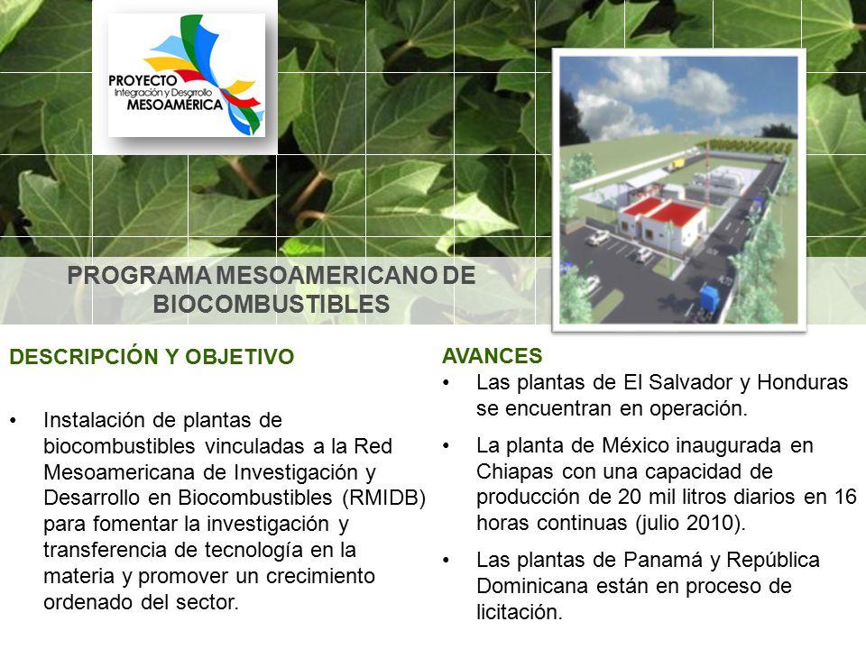 PROGRAMA MESOAMERICANO DE BIOCOMBUSTIBLES