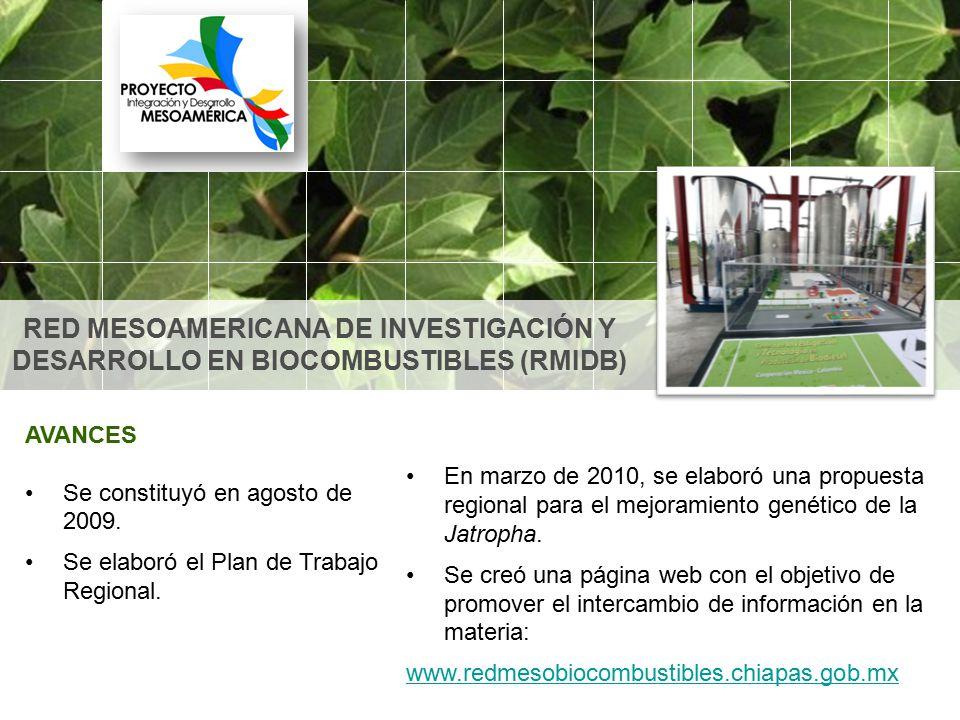 RED MESOAMERICANA DE INVESTIGACIÓN Y DESARROLLO EN BIOCOMBUSTIBLES (RMIDB)