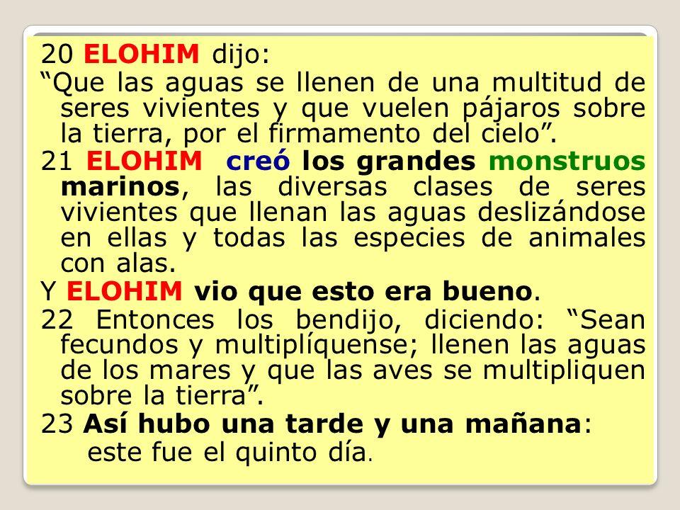 20 ELOHIM dijo: Que las aguas se llenen de una multitud de seres vivientes y que vuelen pájaros sobre la tierra, por el firmamento del cielo .