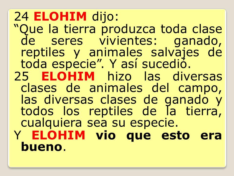 24 ELOHIM dijo: Que la tierra produzca toda clase de seres vivientes: ganado, reptiles y animales salvajes de toda especie . Y así sucedió.