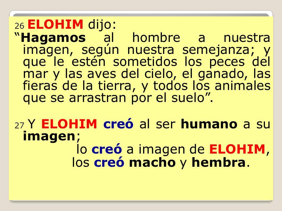 lo creó a imagen de ELOHIM, los creó macho y hembra.
