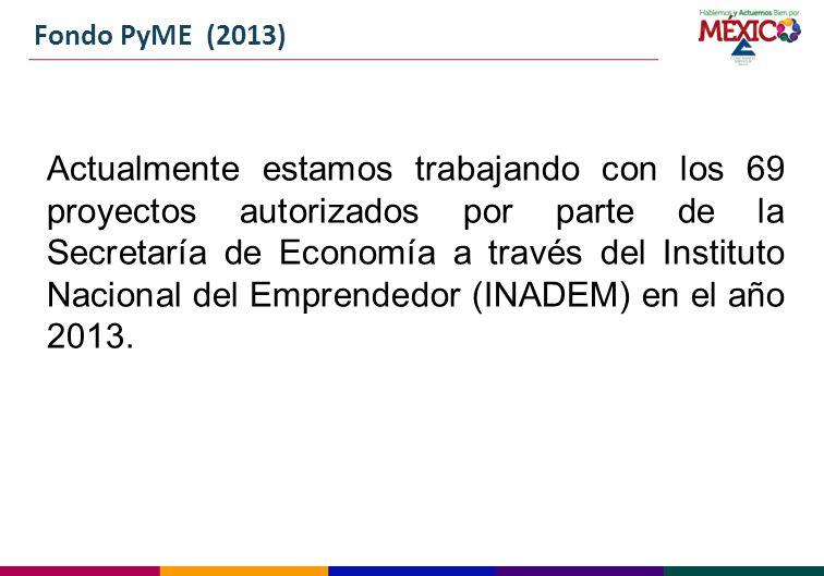 Fondo PyME (2013)
