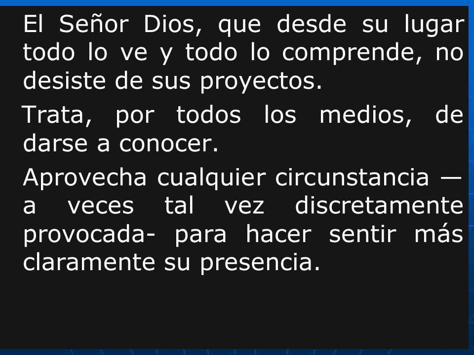 El Señor Dios, que desde su lugar todo lo ve y todo lo comprende, no desiste de sus proyectos.