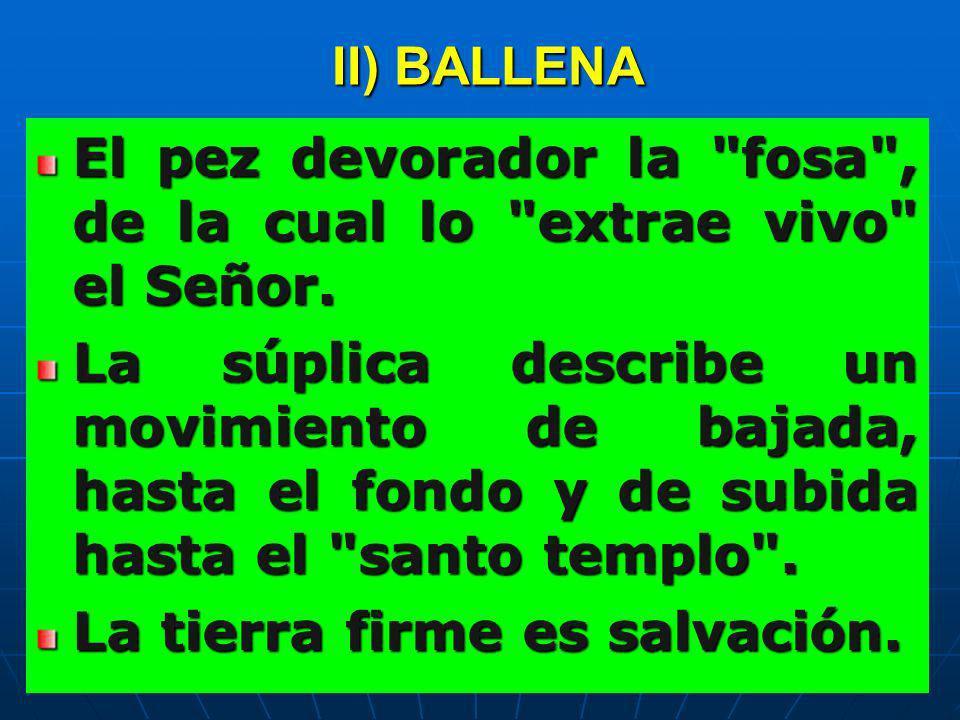 II) BALLENA El pez devorador la fosa , de la cual lo extrae vivo el Señor.