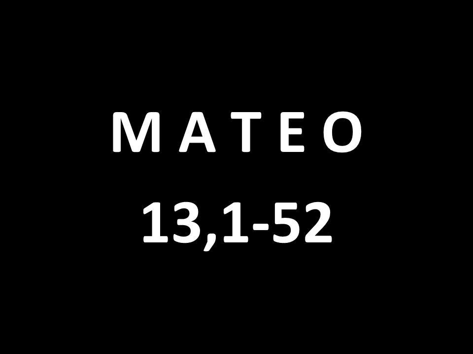 M A T E O 13,1-52