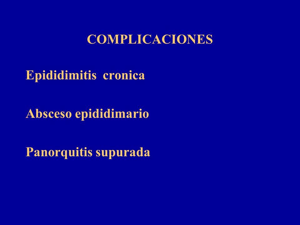 COMPLICACIONES Epididimitis cronica Absceso epididimario Panorquitis supurada