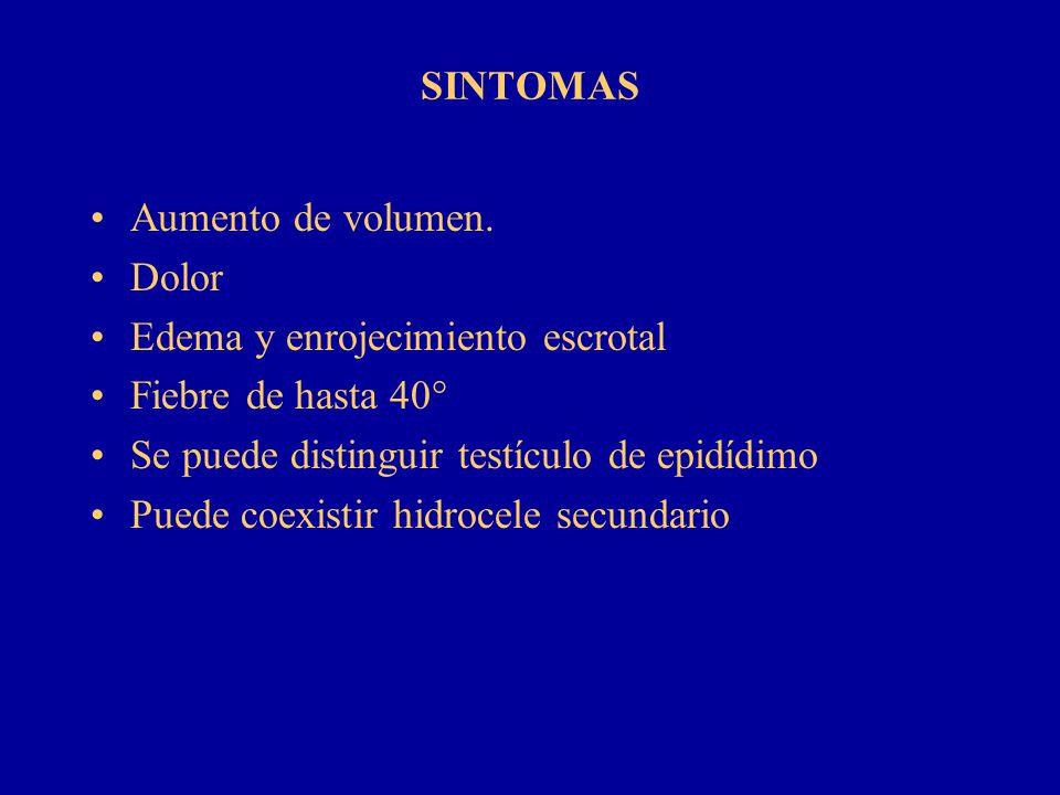 SINTOMAS Aumento de volumen. Dolor. Edema y enrojecimiento escrotal. Fiebre de hasta 40° Se puede distinguir testículo de epidídimo.