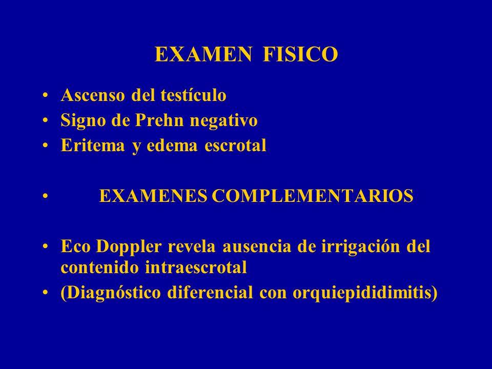 EXAMEN FISICO Ascenso del testículo Signo de Prehn negativo