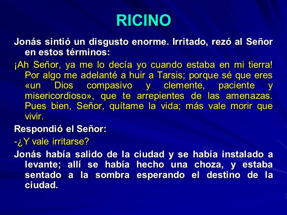 RICINO Jonás sintió un disgusto enorme. Irritado, rezó al Señor en estos términos: