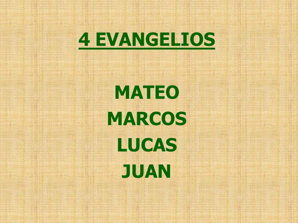 4 EVANGELIOS MATEO MARCOS LUCAS JUAN