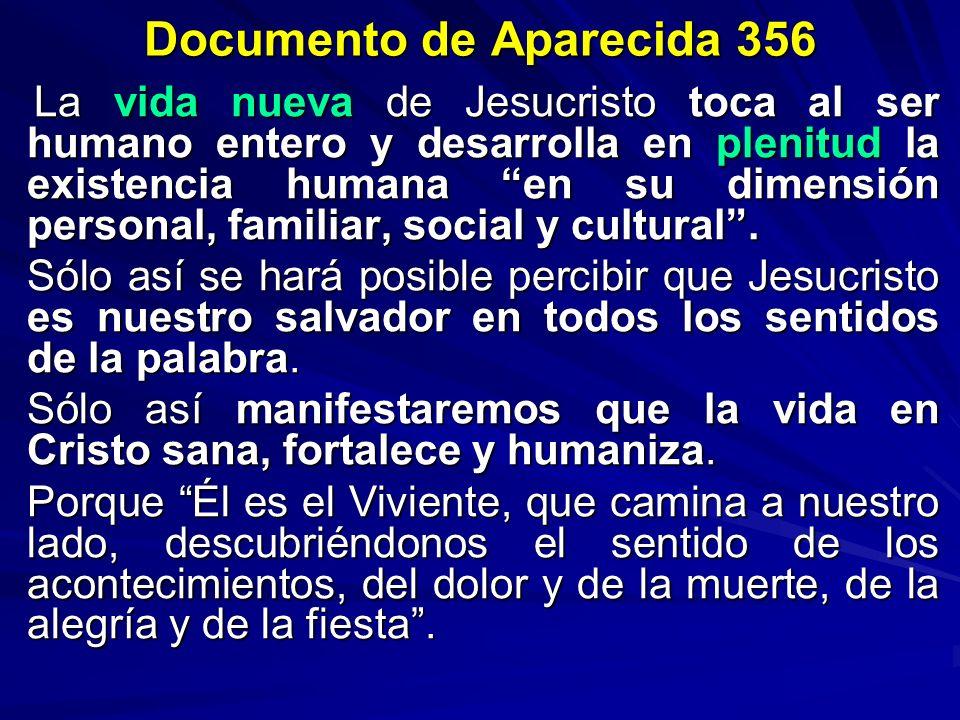 Documento de Aparecida 356