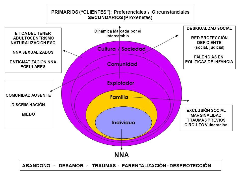 NNA Cultura / Sociedad Comunidad Explotador Familia Individuo