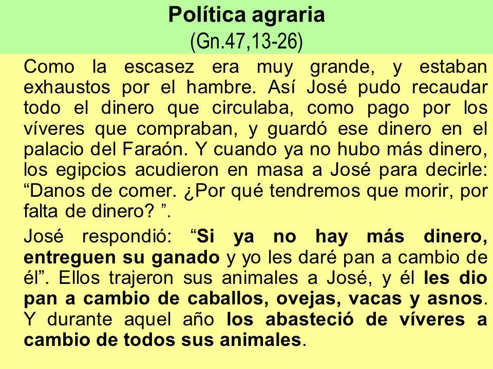 Política agraria (Gn.47,13-26)