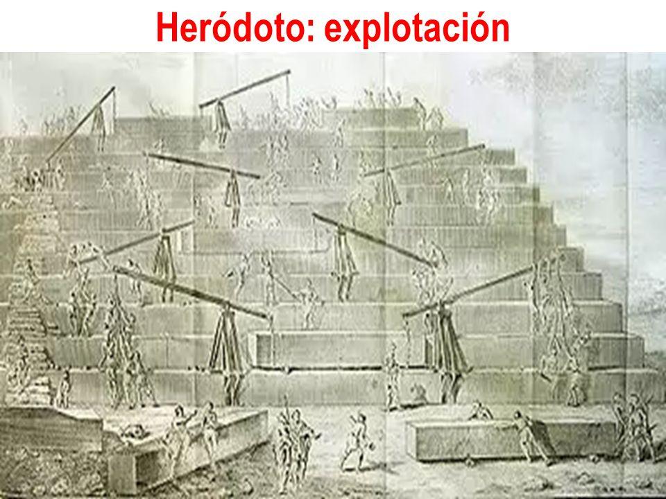 Heródoto: explotación