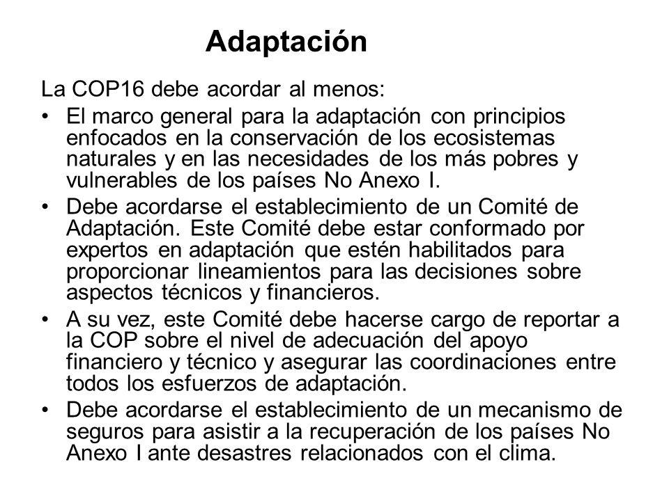 Adaptación La COP16 debe acordar al menos: