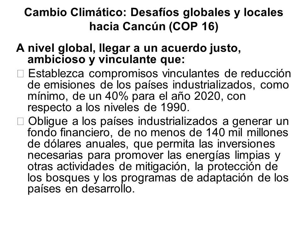 Cambio Climático: Desafíos globales y locales hacia Cancún (COP 16)