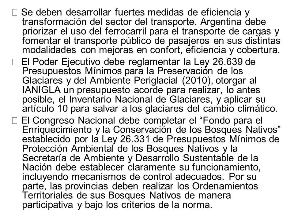  Se deben desarrollar fuertes medidas de eficiencia y transformación del sector del transporte. Argentina debe priorizar el uso del ferrocarril para el transporte de cargas y fomentar el transporte público de pasajeros en sus distintas modalidades con mejoras en confort, eficiencia y cobertura.