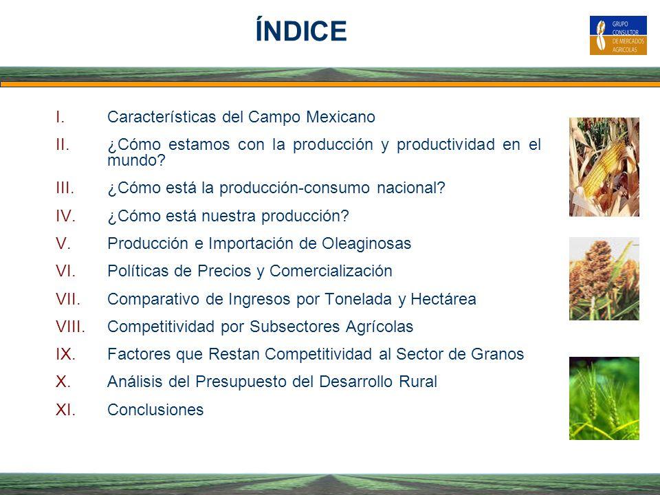 ÍNDICE Características del Campo Mexicano