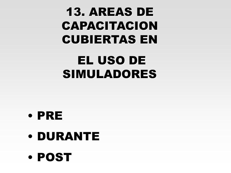 13. AREAS DE CAPACITACION CUBIERTAS EN