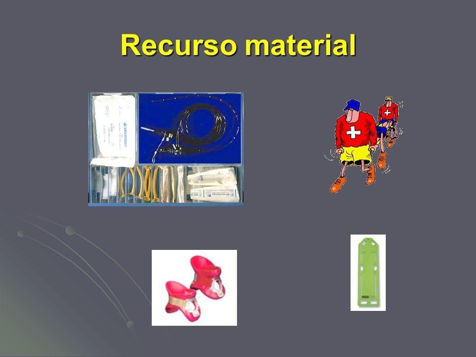 Recurso material