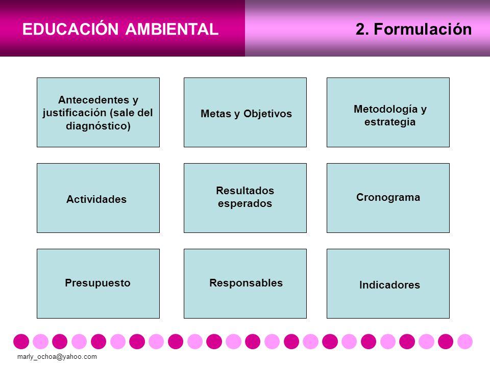 2. Formulación Antecedentes y justificación (sale del diagnóstico)