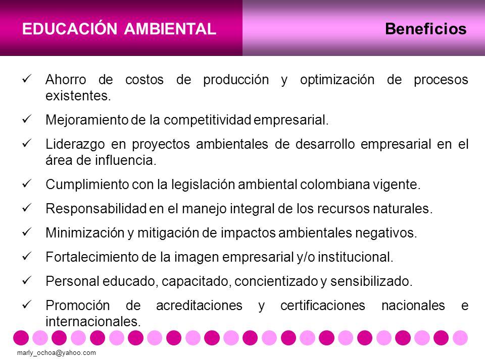 Beneficios Ahorro de costos de producción y optimización de procesos existentes. Mejoramiento de la competitividad empresarial.