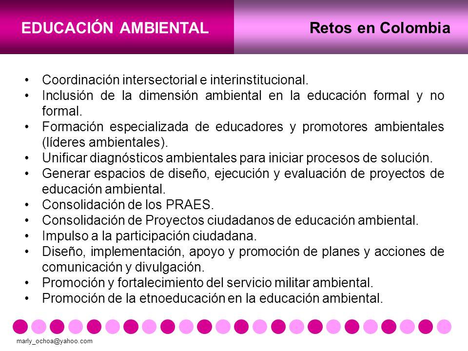 Retos en Colombia Coordinación intersectorial e interinstitucional.