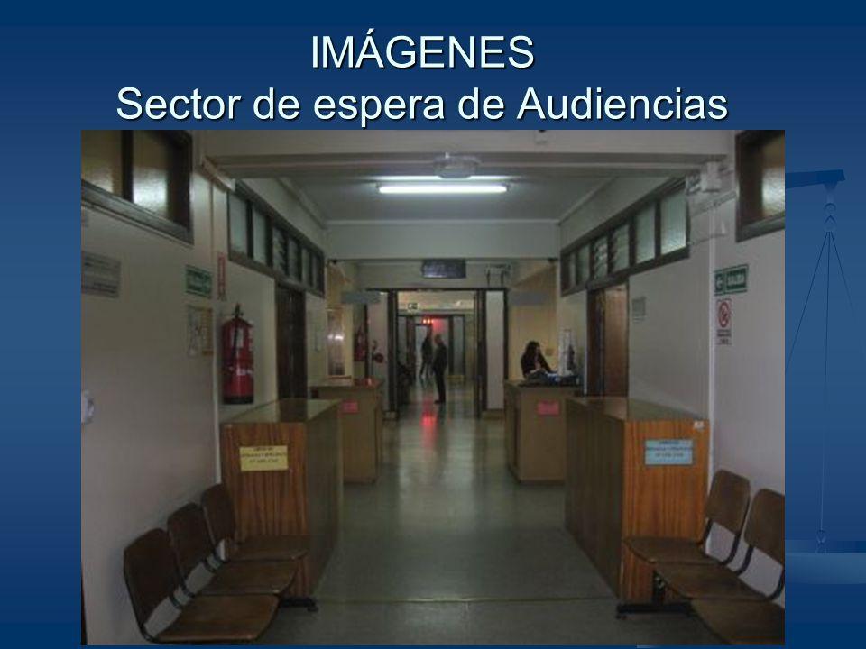IMÁGENES Sector de espera de Audiencias