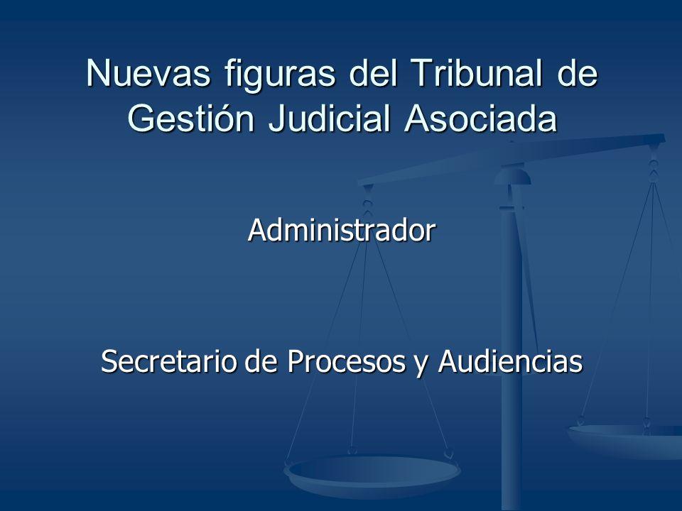 Nuevas figuras del Tribunal de Gestión Judicial Asociada