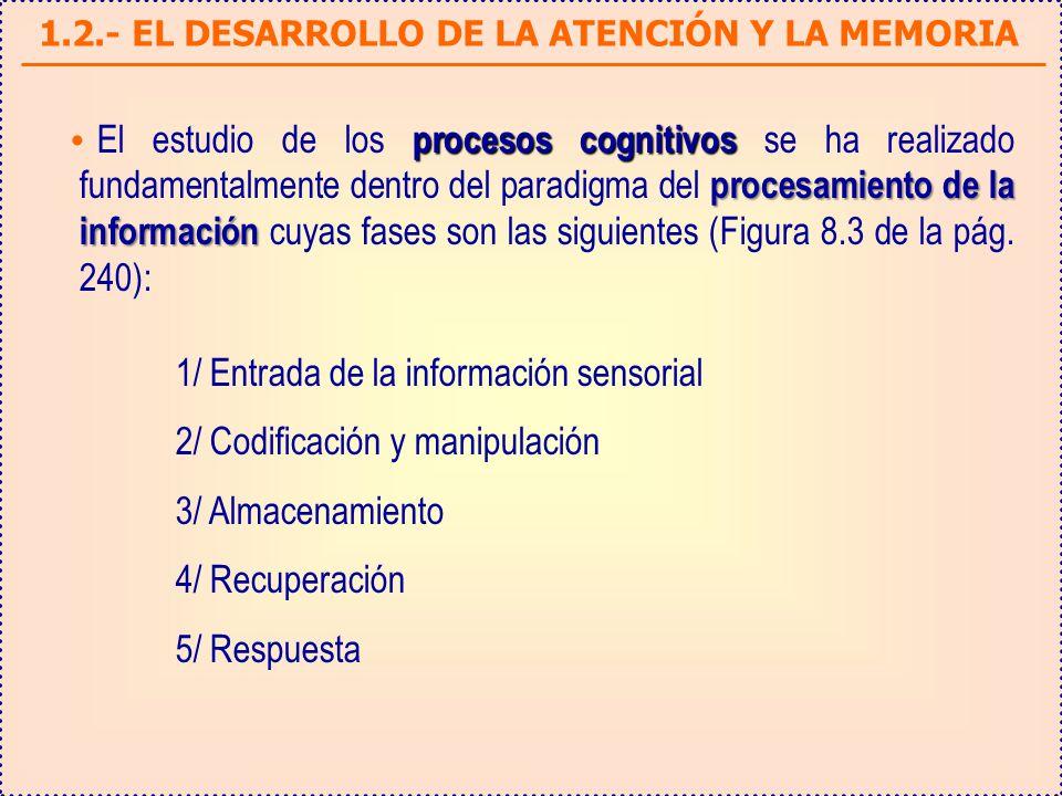 1.2.- EL DESARROLLO DE LA ATENCIÓN Y LA MEMORIA