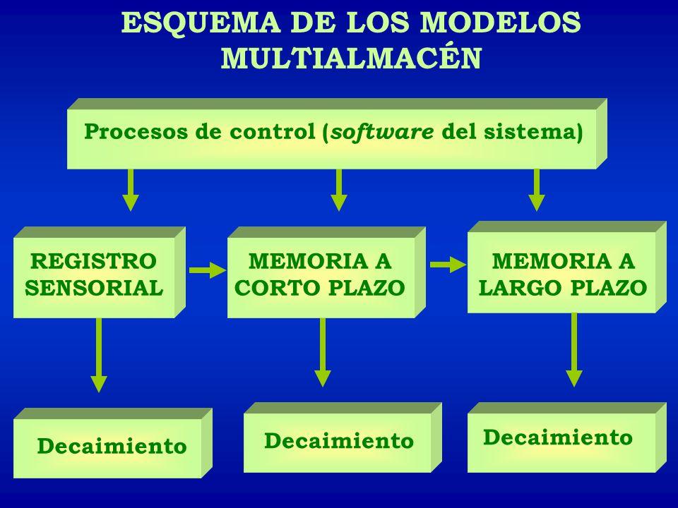 ESQUEMA DE LOS MODELOS MULTIALMACÉN