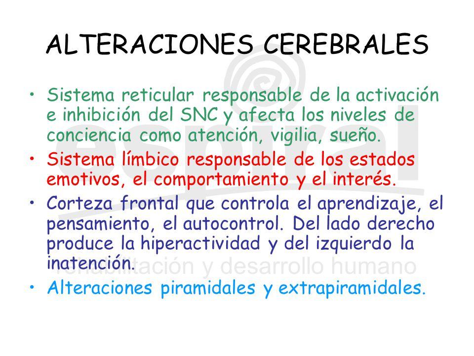 ALTERACIONES CEREBRALES