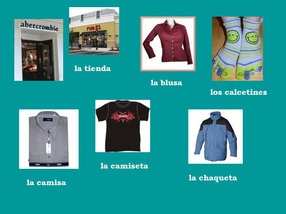 la tienda la blusa los calcetines la camiseta la chaqueta la camisa