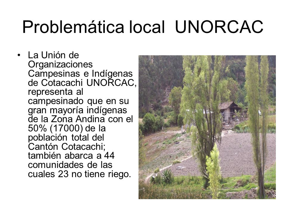 Problemática local UNORCAC