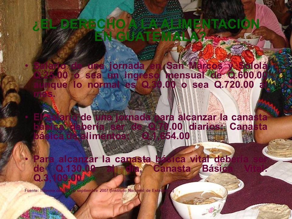 ¿EL DERECHO A LA ALIMENTACIÓN EN GUATEMALA