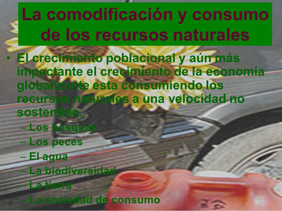 La comodificación y consumo de los recursos naturales