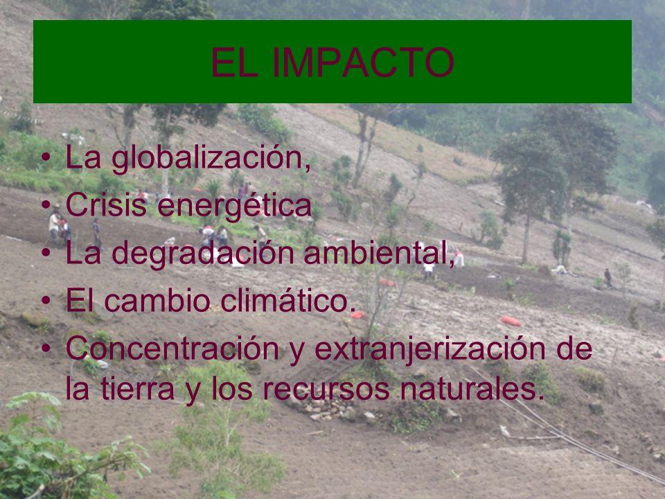 EL IMPACTO La globalización, Crisis energética