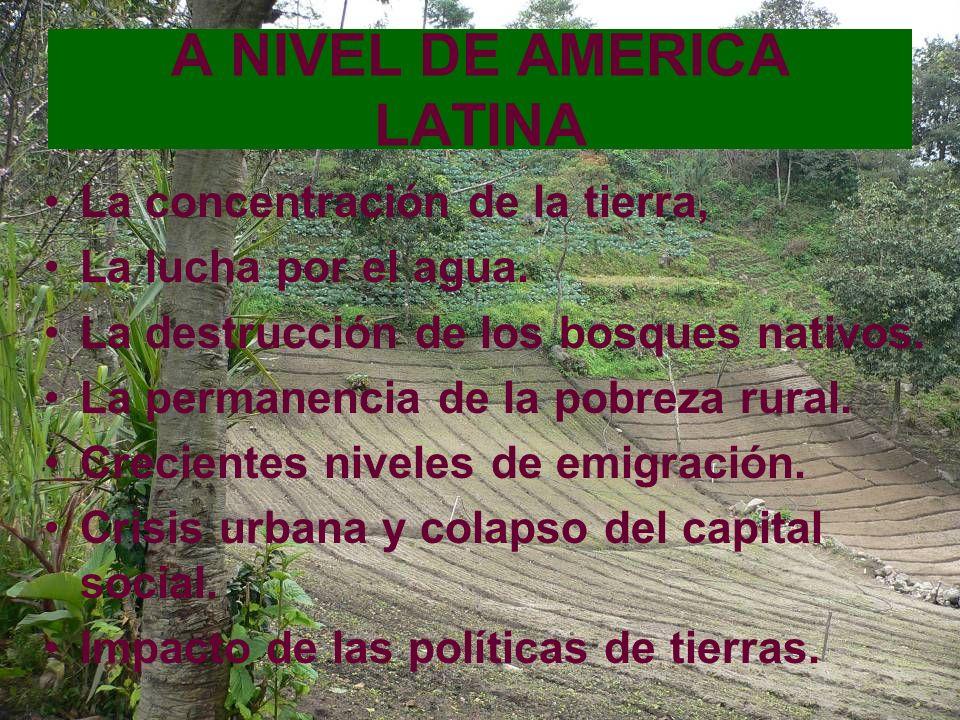 A NIVEL DE AMERICA LATINA