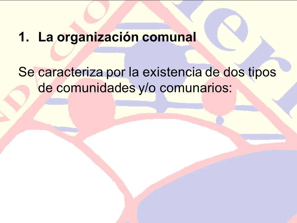 La organización comunal