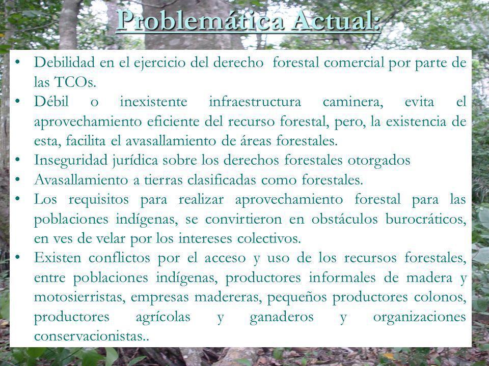 Problemática Actual: Debilidad en el ejercicio del derecho forestal comercial por parte de las TCOs.