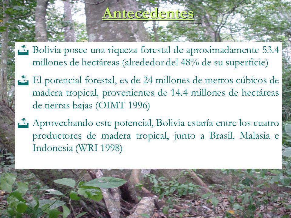 Antecedentes Bolivia posee una riqueza forestal de aproximadamente 53.4 millones de hectáreas (alrededor del 48% de su superficie)
